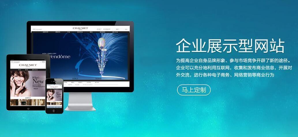 广州展示型企业网站建设方案